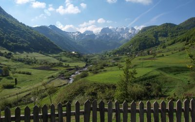 The Albanian Alps within your grasp: Lepushe