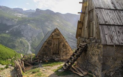 Traditional wooden roofs