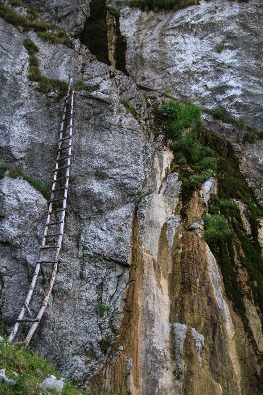 Curious ladder