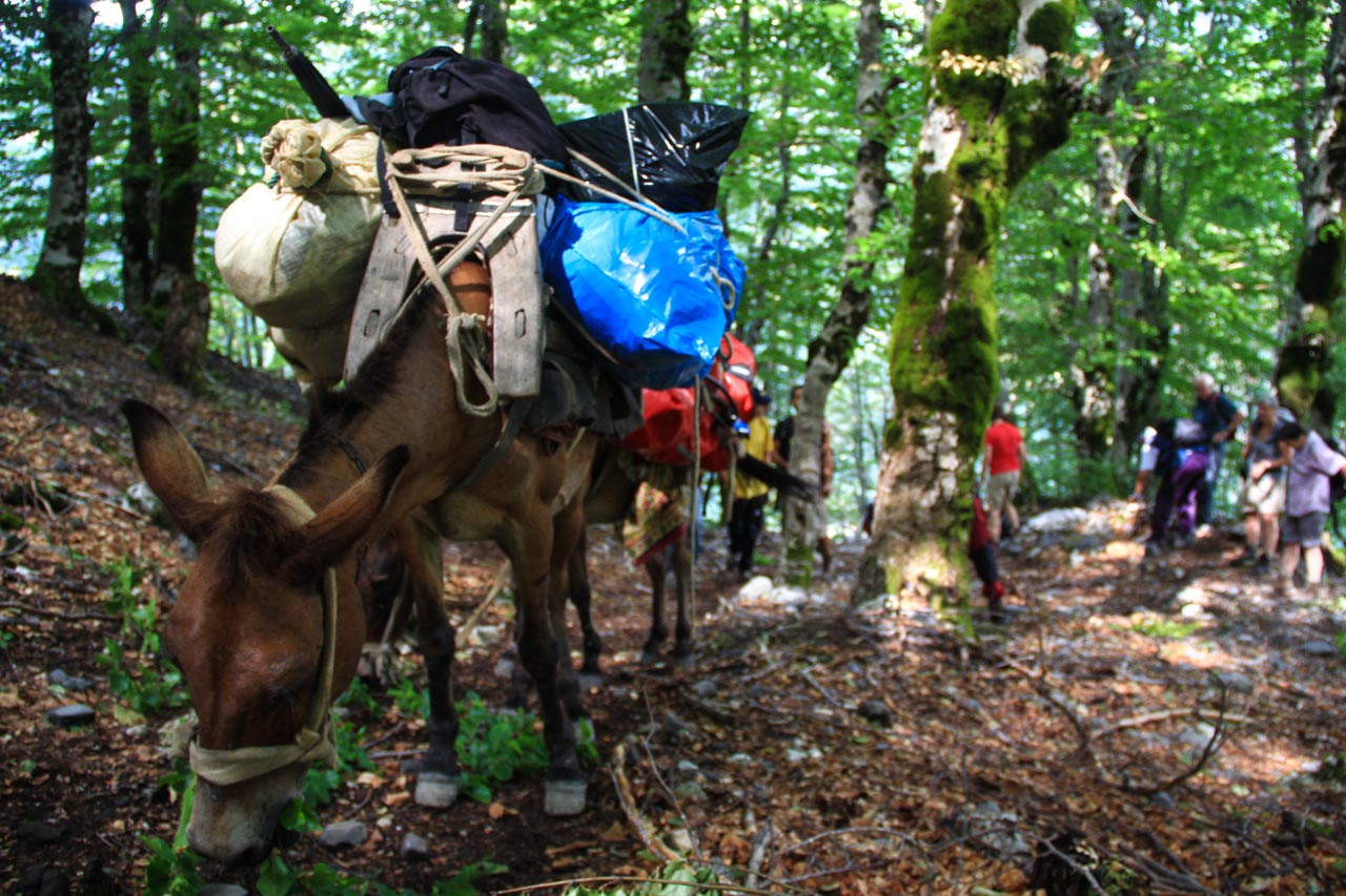 Crossing from Theth to Valbona while luggage is transported on mules